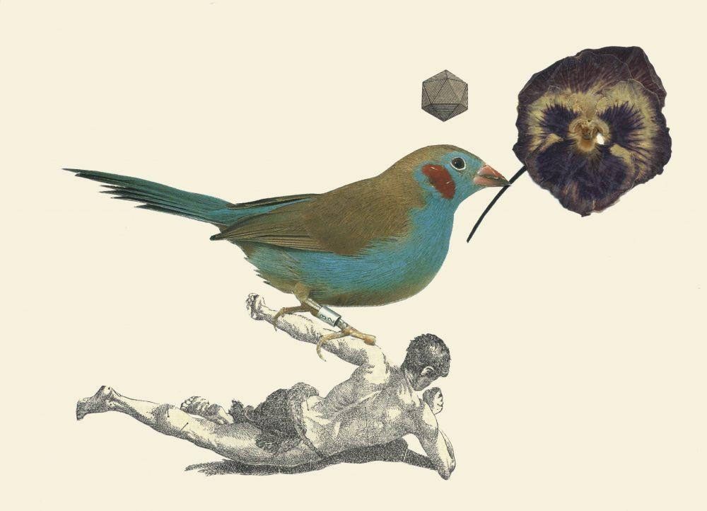 THE BIRDS02